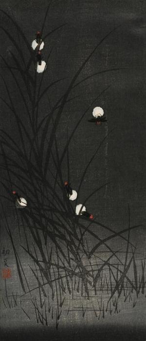 渡辺小華: Fireflies - Art Gallery of Greater Victoria