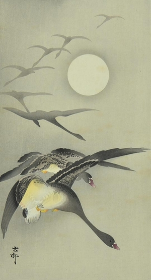 Ohara Koson: Geese and the Moon - Art Gallery of Greater Victoria