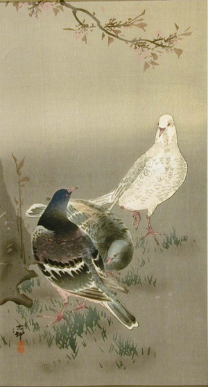 小原古邨: Pigeons - Art Gallery of Greater Victoria