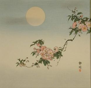 静湖: Cherry Blossoms - Art Gallery of Greater Victoria