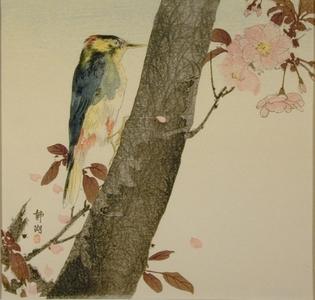 静湖: Woodpecker - Art Gallery of Greater Victoria