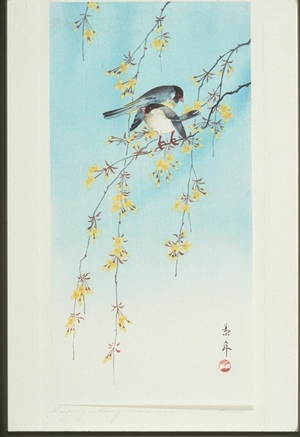 Imao Keinan: Two Birds on Yellow Blossom Branches - Art Gallery of Greater Victoria