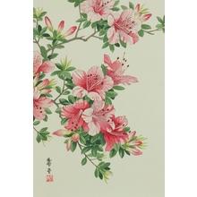 Nishimura Hodo : Azalea - Art Gallery of Greater Victoria