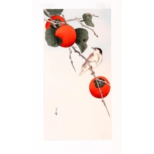 Yoshimoto Gesso: Bird and Persimmons - Art Gallery of Greater Victoria