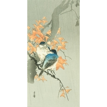 Yoshimoto Gesso: Bluebirds in Rain - Art Gallery of Greater Victoria