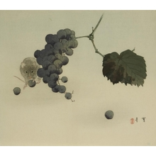 Watanabe Seitei: Mouse and Grapes - Art Gallery of Greater Victoria