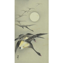 小原古邨: Geese and the Moon - Art Gallery of Greater Victoria