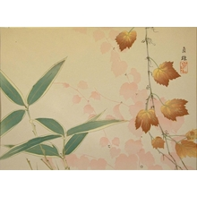 Watanabe Sadao: Boston Ivy and Bamboo - Art Gallery of Greater Victoria