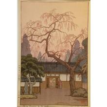 吉田遠志: Cherry Blossoms by the Gate - Art Gallery of Greater Victoria