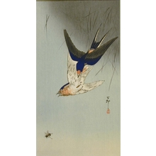 Ohara Koson: Swallows and Bee - Art Gallery of Greater Victoria