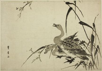 Utagawa Toyohiro: Wild Geese and Reeds - Art Institute of Chicago