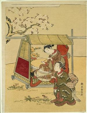 鈴木春信: A Beauty Resting in a Palanquin beneath Cherry Blossoms - シカゴ美術館