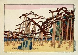 Hiratsuka Un'ichi: Karasaki from Eight Views of Omi - Art Institute of Chicago