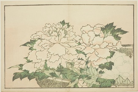Katsushika Hokusai: Chrysanthemums in a Basket, from The Picture Book of Realistic Paintings of Hokusai (Hokusai shashin gafu) - Art Institute of Chicago