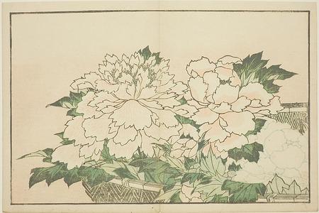 葛飾北斎: Chrysanthemums in a Basket, from The Picture Book of Realistic Paintings of Hokusai (Hokusai shashin gafu) - シカゴ美術館