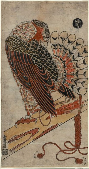 Torii Kiyomasu I: A Male Hawk - Art Institute of Chicago