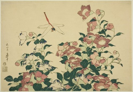 Katsushika Hokusai: Bell-flower and Dragonfly, from an untitled series of large flowers - Art Institute of Chicago