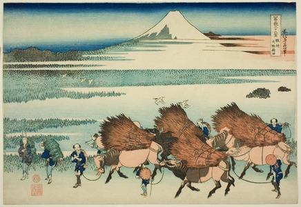 葛飾北斎: The New Fields at Ono in Suruga Province (Sunshu Ono shinden), from the series Thirty-six views of Mount Fuji (Fugaku sanjurokkei) - シカゴ美術館
