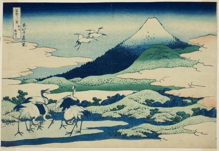 Katsushika Hokusai: Umezawa Marsh in Sagami Province (Soshu umezawa hidari), from the series Thirty-six Views of Mt. Fuji (Fugaku sanjurokkei) - Art Institute of Chicago