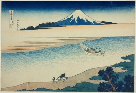 葛飾北斎: Tama River in Musashi Province (Bushu Tamagawa), from the series Thirty-six Views of Mount Fuji (Fugaku sanjurokkei) - シカゴ美術館