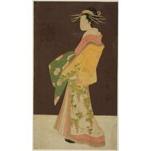 細田栄之: A Selection of Beauty from the Pleasure Quarters (Seiro bisen awase): Hanamurasaki of the Tamaya in Procession (Tamaya Hanamurasaki dochu no zu) - シカゴ美術館