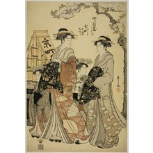 細田栄之: Nanamachi of the Yotsumeya with Attendants Sumano and Akashi - シカゴ美術館