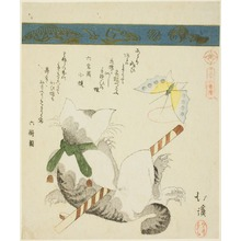 Totoya Hokkei: Cat Playing with a Toy Butterfly, from the series