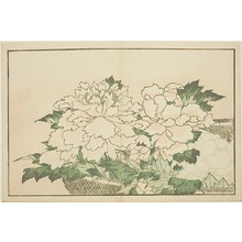 葛飾北斎: Chrysanthemums in a Basket, from The Picture Book of Realistic Paintings of Hokusai (Hokusai shashin gafu) - シカゴ美術館