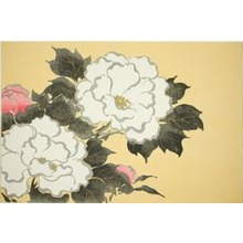 Kamisaka Sekka: Peonies, from the series