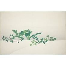 神坂雪佳: Spring Herbs, from the series