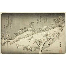 歌川広重: Lingering Snow at Asukayama (Asukayama no bosetsu), from the series