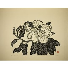 Hiratsuka Un'ichi: Flower of the Evergreen Magnolia - Art Institute of Chicago