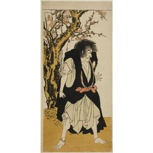 勝川春章: The Actor Ichikawa Danjuro V as the Renegade Buddhist Monk Wantetsu from Okamidani, in the Fifth Scene of the Play Date Nishiki Tsui no Yumitori (A Dandyish Brocade: Opposing Warriors), Performed at the Morita Theater in the Eleventh Month, 1778 - シカゴ美術館