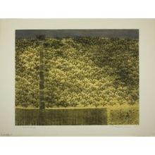 Tanaka Ryohei: Orchard No. 1 - シカゴ美術館
