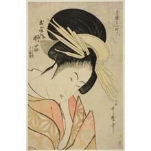 Kitagawa Utamaro: Akashi of the Tamaya, from the series Seven Komachis of Yoshiwara (Seiro nana Komachi) (Tamaya uchi Akashi, Uraji, Shimano) - Art Institute of Chicago