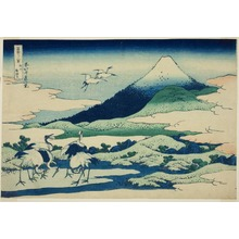 Katsushika Hokusai: Umezawa Marsh in Sagami Province (Soshu umezawa hidari), from the series Thirty-six Views of Mt. Fuji (Fugaku sanjurokkei) - Art Institute of Chicago