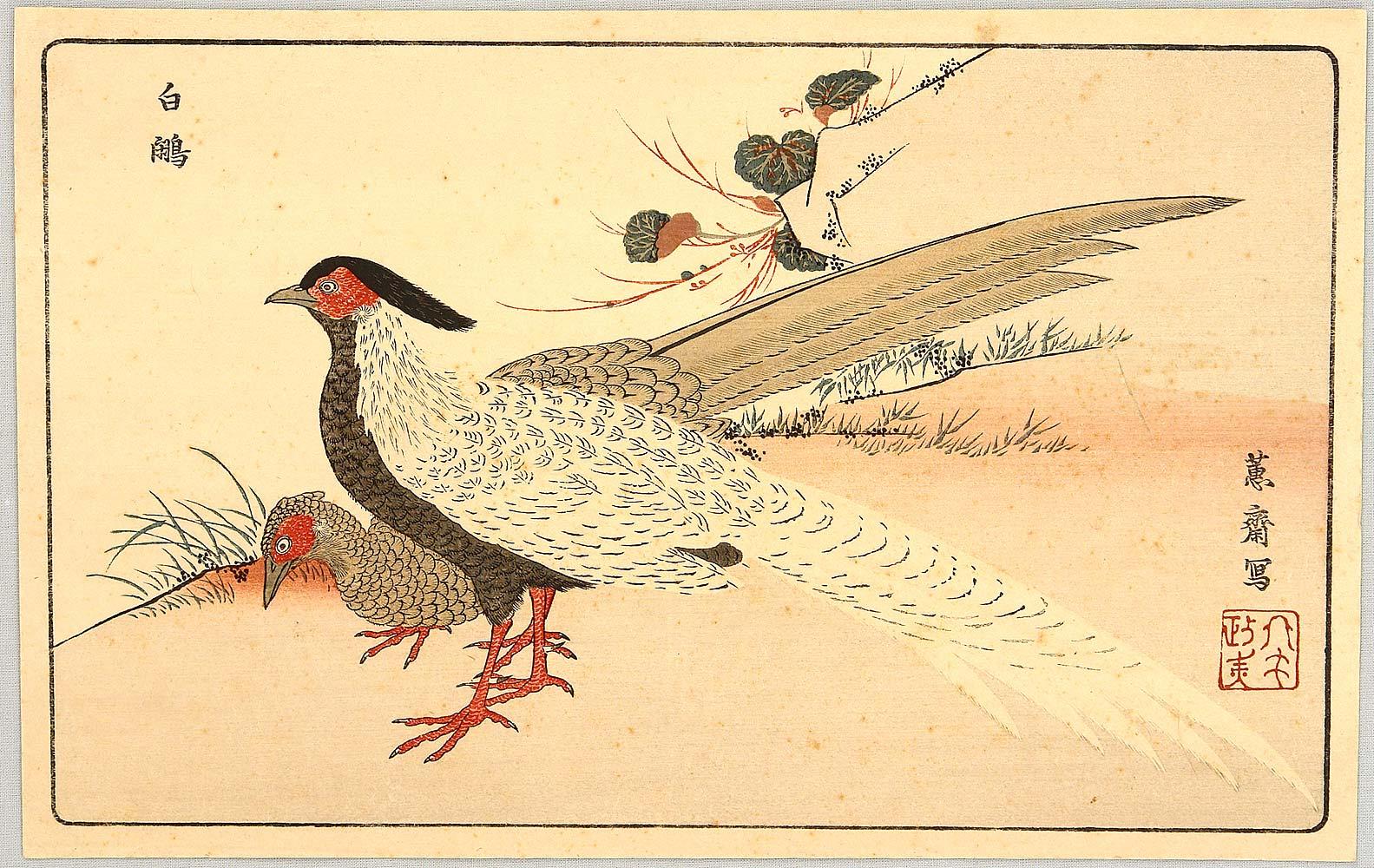北尾政美の画像 p1_16