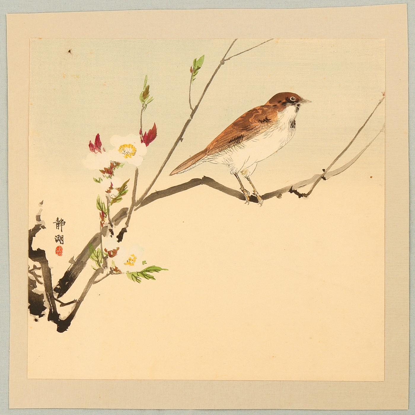 Japanese Bird Prints