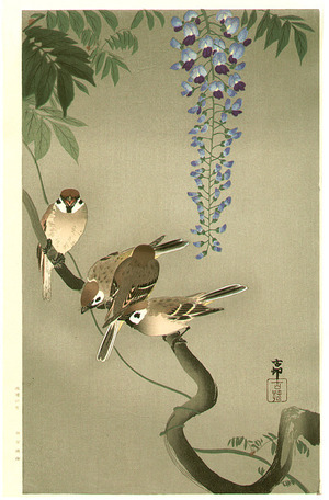 Ohara Koson: Sparrows and Wisteria (extra-large) - Artelino