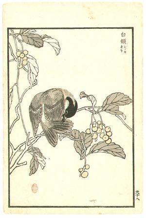 Kono Bairei: Three Birds (3 sheets) - Artelino