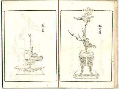 Unknown: Flower Arranging by Ikenobo School Vol.1 (e-hon) - Artelino