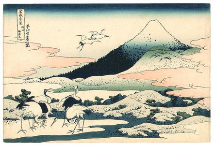 Katsushika Hokusai: Umezawazai - Fugaku Sanju-rokkei - Artelino