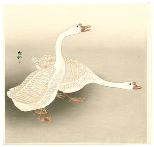 Ohara Koson: Two Ducks - Artelino