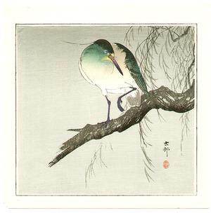 小原古邨: Green Bird - Artelino