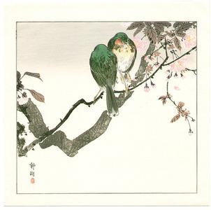 静湖: Two Green Birds on Cherry Tree - Artelino