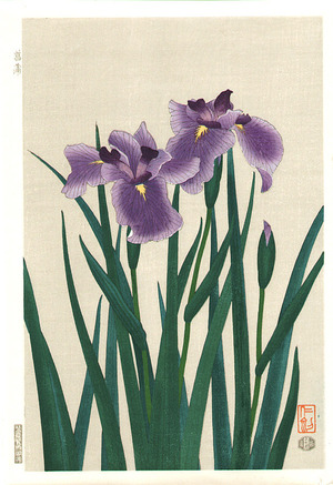 Ito Nisaburo: Iris - Artelino