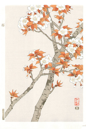 Ito Nisaburo: Cherry Blossoms - Artelino