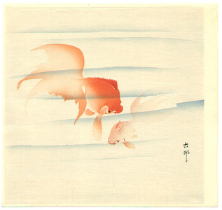 Ohara Koson: Two Gold Fish - Artelino