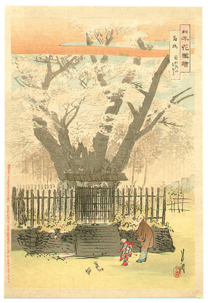 Ogata Gekko: Ancient Cherry Tree - Flowers of Japan - Artelino