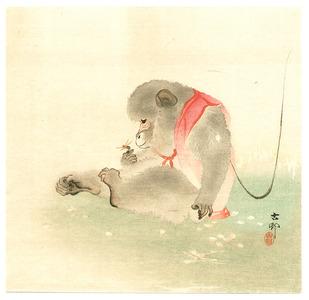 Ohara Koson: Monkey and Bee - Artelino